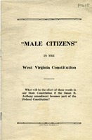 "[""<p> Pamphlet. On cover: ""What will be the effect of these words in our State Constitution if the Susan B. Anthony amendment becomes part of the Federal Constitution?""</p>""]"